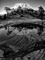 Reflection, Checkerboard Mesa, Zion National Park.